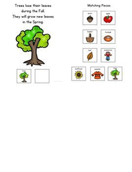 My Vocabulary Book: Fall Things Adapted Book Students with Autism