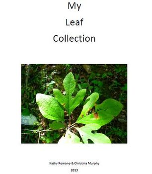 My Wild Flower and Leaf Collection