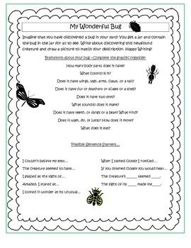 My Wonderful Bug Writing Prompt
