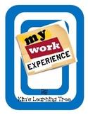 My Work Experience....