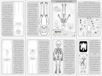 My body mini book 3 - internal organs