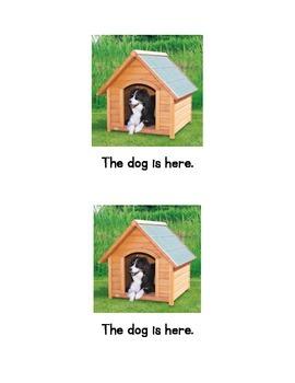 My favorite pets Emergent Reader