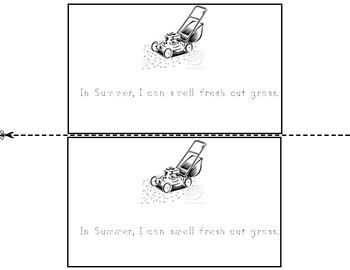 My five senses: Summer
