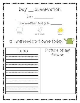My flower journal