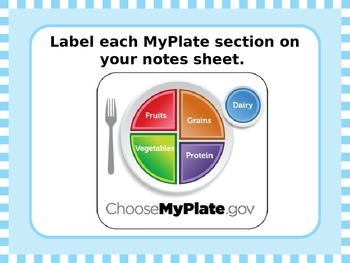 Myplate Powerpoint Worksheets Teaching Resources Tpt