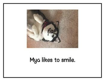 Mya Likes- book