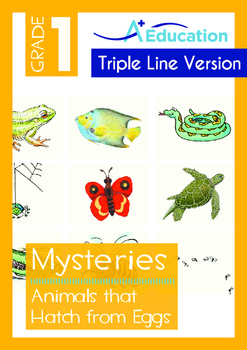 Mysteries - Animals that Hatch from Eggs (II) - Grade 1 ('