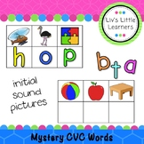 Mystery CVC Word Cards (initial sounds phonics)
