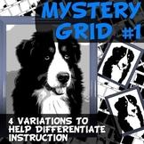 Mystery Grid # 1