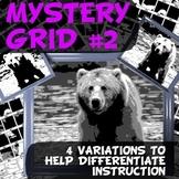 Mystery Grid # 2