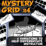 Mystery Grid # 4