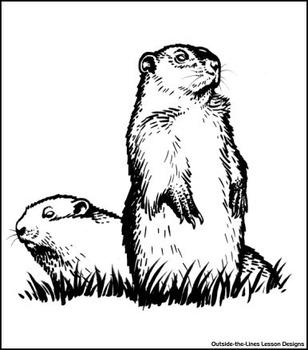 Mystery Grid Drawing - Groundhogs **Includes bonus worksheet**