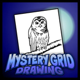 Mystery Grid Drawing - Owl