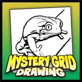 Mystery Grid Drawing - Tree Frog