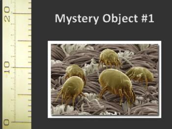 Mystery Microscopic Objects activity