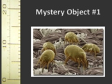 Mystery Microscopic Objects activity