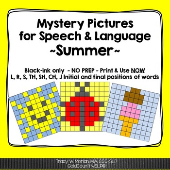 Mystery Pictures for Speech & Language - Summer
