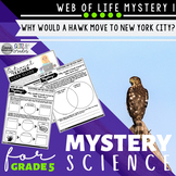 Mystery Science 5th Grade Web of Life | Mystery 1 Food Chains
