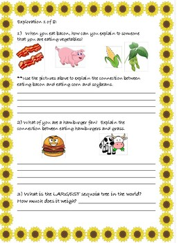 """Mystery Science- Web of life- Mystery 2 """"What do plants eat?"""""""