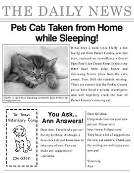 Mystery Series: Case of the Captured Cat | Reading & Thinking Skills