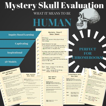Mystery Skull Evaluation - Inquiry Based Lesson
