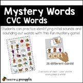 Mystery Words - CVC and CCVC word work fun!