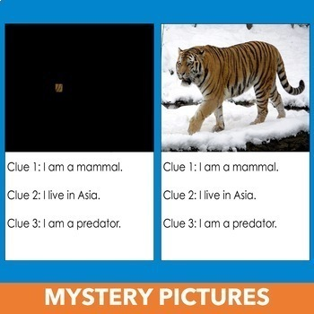 Mystery Writing Unit - 3 Activities for Third Grade, Fourth Grade, Fifth Grade