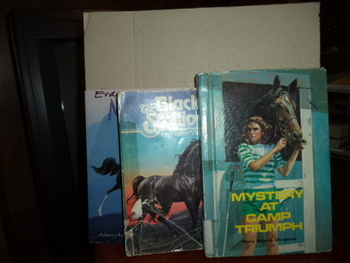 Mystery at Camp Triumph,The Black Stallion, and Disney's Mulan (Set of 3)