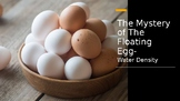 Mystery of The Floating Egg (water density experiment)