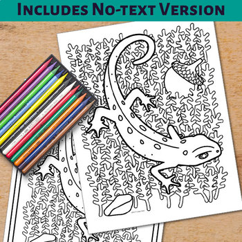 Animal Alphabet Coloring Pages: N is for Newt