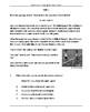 NAPLAN LITERACY SKILLS Conventions of Language Quiz Book Year 4