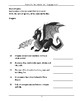 NAPLAN LITERACY SKILLS Practice Test Book Conventions of Language Year 3