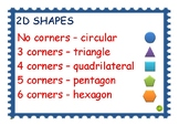 NE-Y2 activity identify 2D shapes