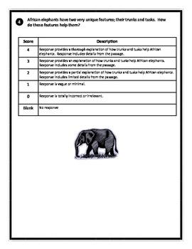 NECAP Prep. African Elephants