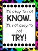 NEON Growth Mindset Classroom Poster Set {#2017dollardeals}