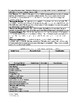 NEPSYII Attention and Executive Functioning Domain Template