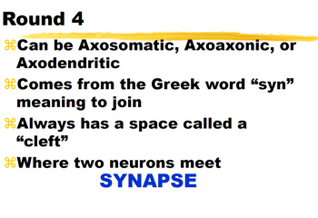 NERVOUS SYSTEM ~PowerPoint ADD A CLUE Review Game~