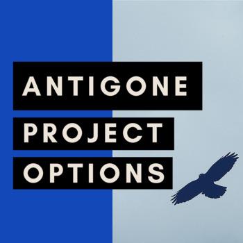 NEW! Antigone Project Options