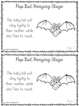 Bat Life Cycle | 48 Pages for Differentiated Learning + Bonus Pages