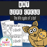 Bat Life Cycle | 48 Pages for Differentiated Learning + Bo