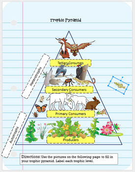 NEW Digital Interactive Notebook Ecosystems