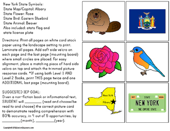 NEW YORK State Symbols ADAPTED BOOK for Special Education and Autism