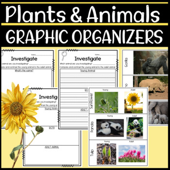 NGSS 1-LS3.1 Science Graphic Organizers