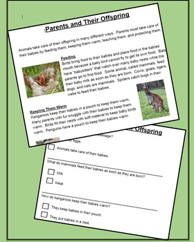 NGSS - 1st Grade Life Science:  Animals, Offspring, and External Features