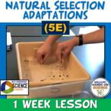 NGSS LS4.B LS4.C: Natural Selection Adaptations Selective Breeding 5E