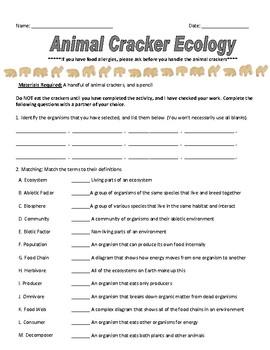 Animal Cracker Ecology