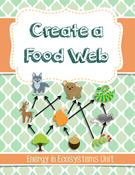 NGSS 5-LS2-1 and MS-LS2-3 Food Web Worksheet