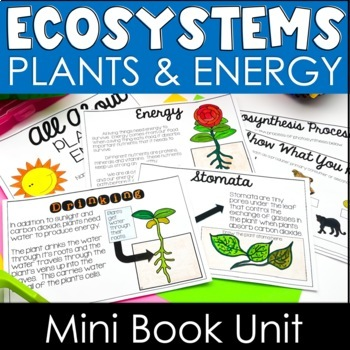 NGSS Aligned - Plants & Energy Booklet