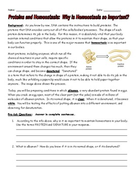 NGSS Aligned:  Proteins and Homeostasis: Designing an Experiment