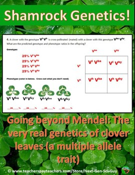 NGSS Aligned: Shamrock Genetics: Practice with a Multiple